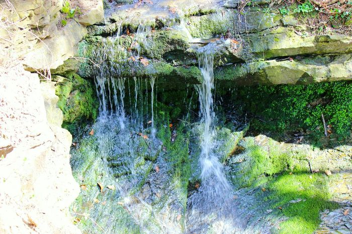 Walikng In The Countryside Canon EOS 600D DSLR Hello World Wirral Peninsula 2016 Mini Waterfalls Simplicity Enjoying Life Spingtime Colours