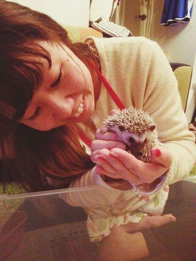 Headgehog ハリネズミ Love