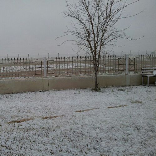 Snowing in Erbil