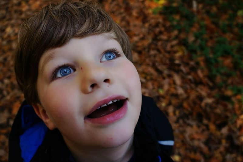 Autumn Collection Showcase: February Nature Light And Shadow Original Experiences Autumn Happiness Stunned Children Child Fall_collection Tree_collection  Autumn Leaves Nature_collection Portrait Kid Family Blue Eyes Eyes Blurry Background Amazement BYOPaper! Leaves_collection Close-up This Is Family