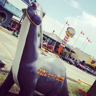 I love all the sculptures around everywhere! So cute. Adventuretrip SouthOftheborder Dinosaur