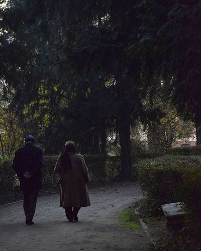 Nofilter Oldpeople Couple Walkingpeople Italy Nikond3300 Nikonphotography Photograpy Photooftheday Photographer Like4like L4l Streetphotography Green Trees Forest Villaghirlanda Cinisellobalsamo Follow4follow