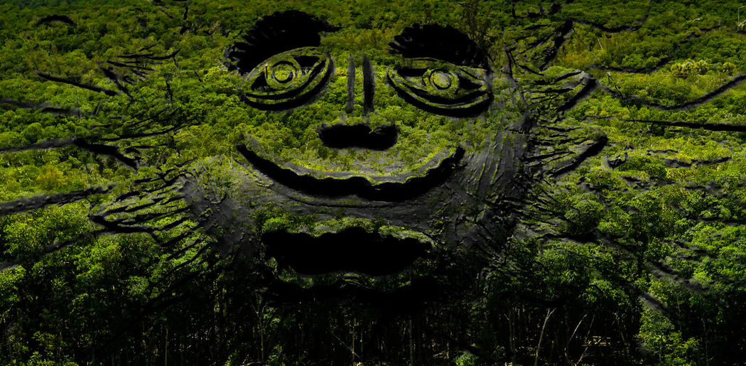 Close-up of statue with moss