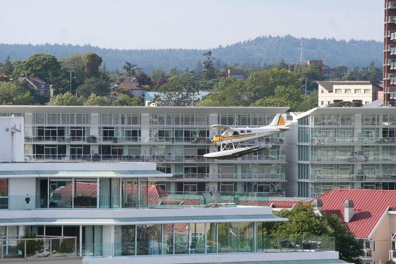City Cityscape Flying Landing Plane Outdoors Sea Plane Sea Plane Fl Sky Victoria Harbour