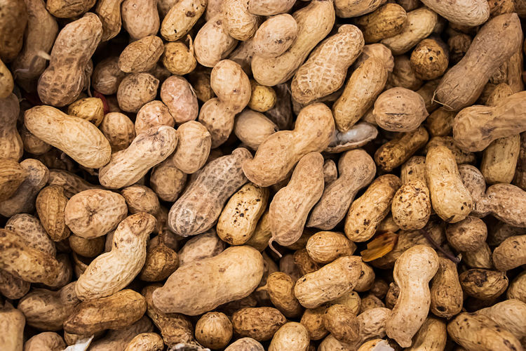 Inshell peanuts. background from nuts for a healthy diet