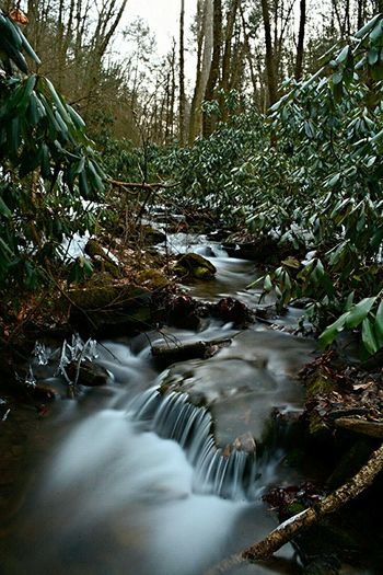 Water Water_collection Waterscape Waterfall Mountain Stream Nikonphotography Nikon D7100 Pennsylvania Beauty Nature Nature_collection