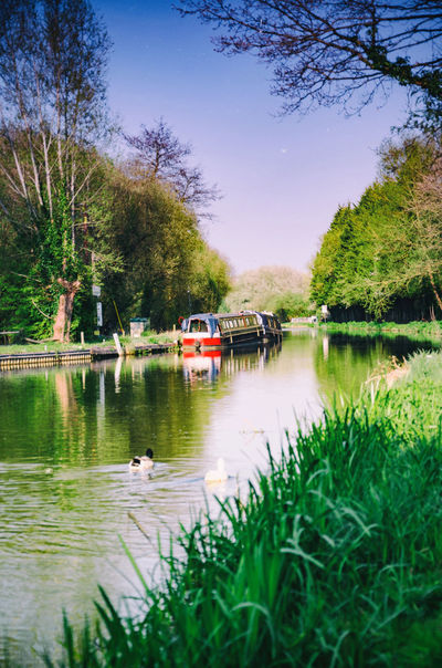 The banks of The River Kennet in Reading, Berkshire in The UK on a sunny evening. Boat Canal Day Grass Grass Green Leisure Activity Mode Of Transport Narrowboat Nautical Vessel Outdoors Peaceful Quiet Reflection River River Kennet Sky Tranquility Tranquility Tree Water Waterway