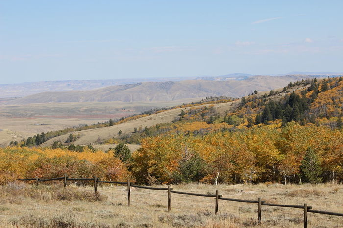 Wyoming Landscape Fall Colors Beauty In Nature Outdoors Mountain Wyoming Southpass Turning Colors Distant Background Distant Mountains