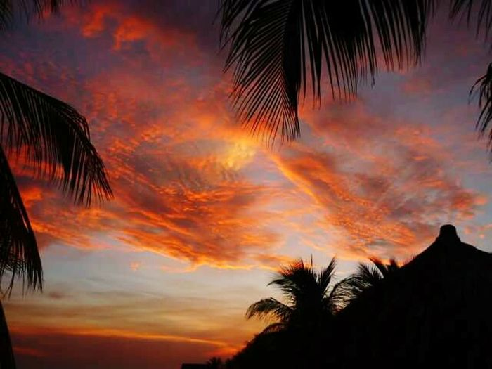 Taking Photos Sky And Clouds Hello World Sunset Sunset Silhouettes Enjoying The View Summer Views Nature Check This Out Enjoying Life Curacao Sunset