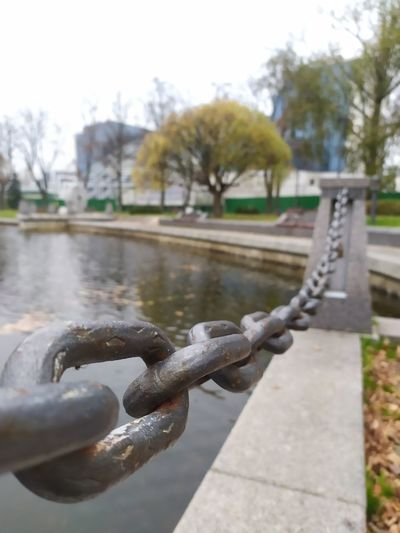 Close-up of chain by lake against trees