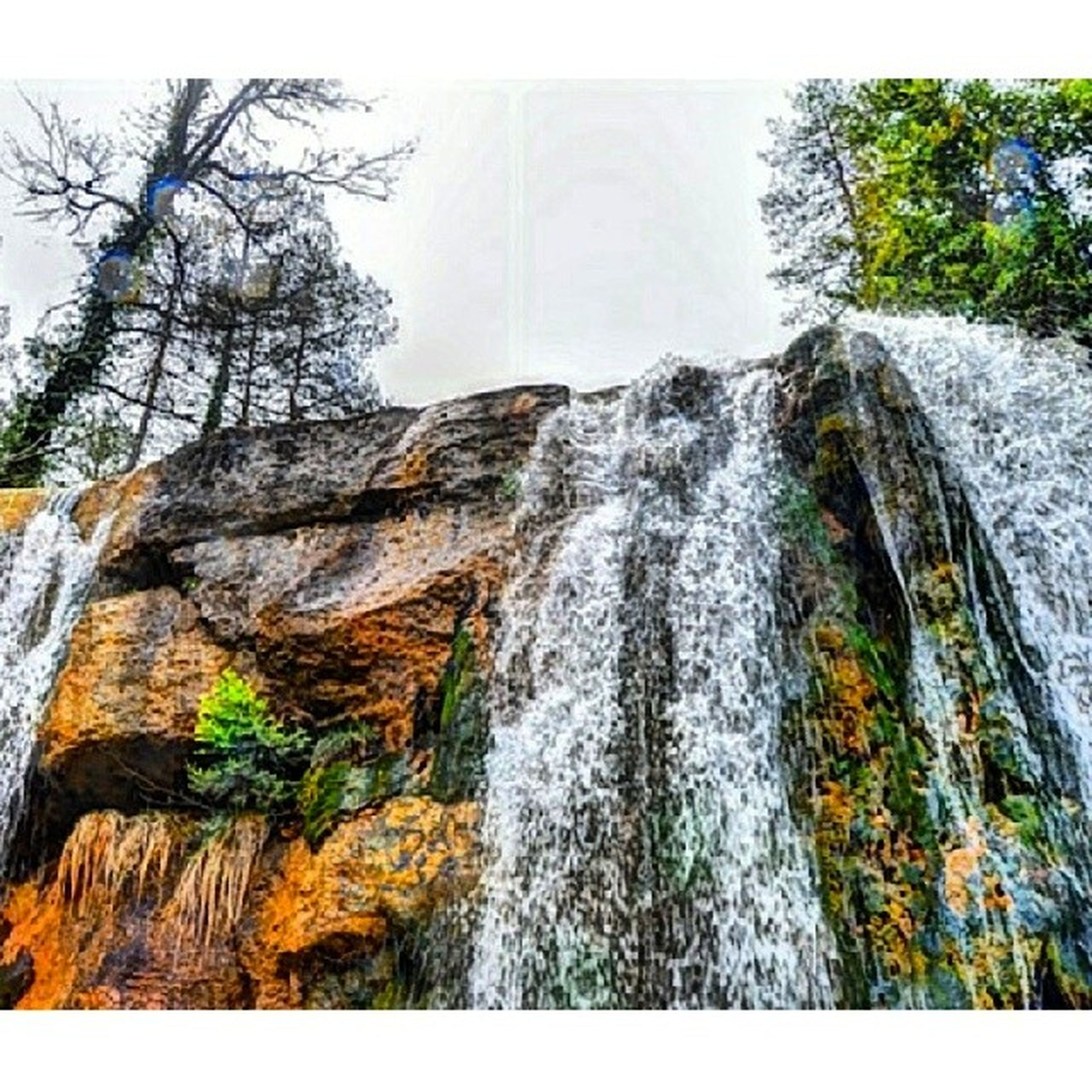 tree, waterfall, water, nature, rock - object, motion, flowing water, clear sky, rock formation, beauty in nature, low angle view, scenics, long exposure, flowing, day, tranquility, growth, outdoors, no people, branch