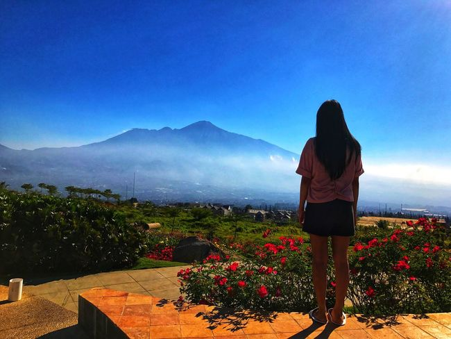 Gunung Arjuna #journey #Nature  #travelling Gunung Arjuno #likeforlike #likemyphoto #qlikemyphotos #like4like #likemypic #likeback #ilikeback #10likes #50likes #100likes #20likes #likere #EyeEm Photography Wisataindonesia Rear View Real People Sky Beauty In Nature Lifestyles Mountain My Best Travel Photo Leisure Activity Women Nature Full Length Standing One Person Casual Clothing Adult Land Scenics - Nature Outdoors Plant Mountain Range Clear Sky