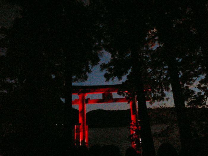 Shrine Of Japan