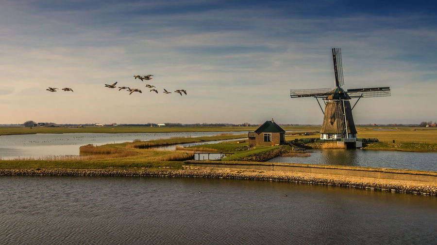 Windmill Netherlands Texel  Animal Idyllic Nature No People Outdoors Scenics - Nature Sky Water Wind Power
