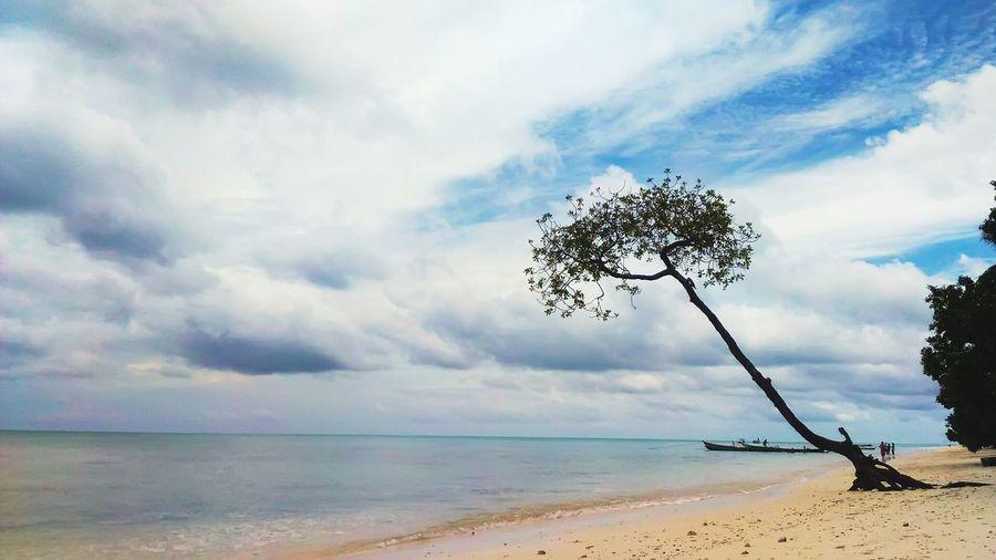 A wonderful morning walk at hevlok beach, Andaman. Sea Nature Outdoors Beach Water Vacations Sky Day Beauty In Nature History Tourism Wonderful Corel Andaman Walk India Sand Island Ocen  Clam Cloud - Sky Beautiful Nature Travel Destinations Place