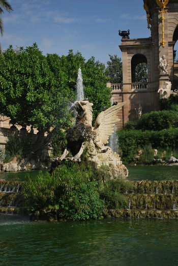 Ancient Architecture Barcelona Barcelona, Spain Building Exterior Catalonia Catalunya Day Fountain History Nature No People Outdoor Outdoor Photography Outdoors Outdoors Photograpghy  Outside Outside Photography Park Sky SPAIN Travel Destinations Tree Water