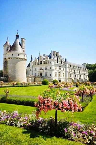 Gorgeous History Architecture Castle Flower Clear Sky Blue Outdoors No People Day Sky Chenonceaux France🇫🇷 Loire Valley, France Renaissance Castle Park