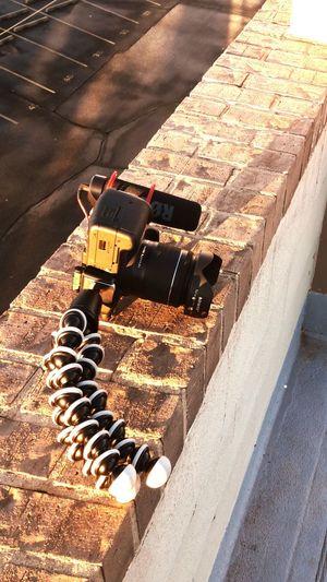 My baby Outdoors No People Canon_official Canon_photos Canon700D Amarillo, TX Texas Morning Vlogger 7 Am