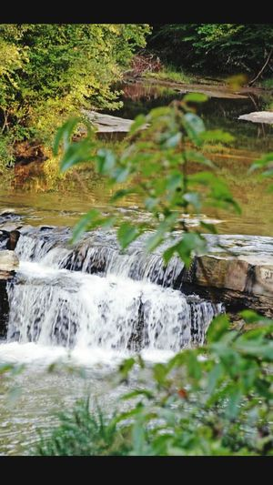 Waterfall Hidden Jems Small Falls Creek Life Springs Of Crystal Springs Mississippi Waterfalls And Creeks Double Waterfalls Nature Photography Water Photography Here Belongs To Me The KIOMI Collection The Essence Of Summer