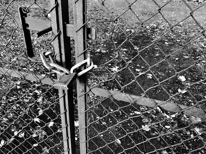 Fence Outdoors Close-up Day Lock Padlock