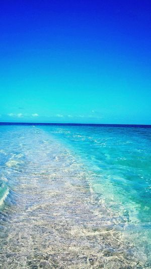 Taking Photos Beautiful Blue Sky☁ Beautiful Blue Sea Check This Out Great Barrier Reef