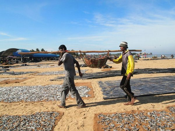 Get the fish RePicture Travel Fisherman Human Interest Sri Lanka Traveling In Sri Lanka