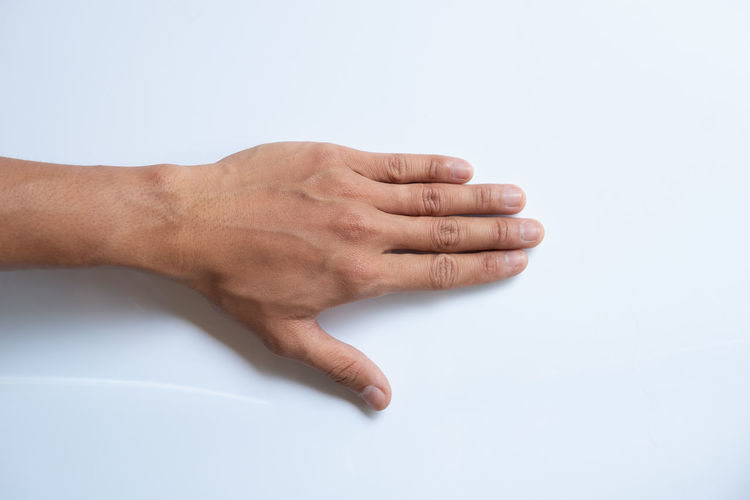 Hand Human Hand