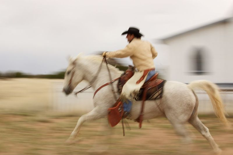 Horse Horseback Riding Domestic Animals Motion Animal Themes Working Animal Mammal Riding One Animal Santafe Newmexicophotography Speed Cowboy Day Sand Jockey One Person Outdoors Horse Racing Hoofed Mammal Close-up Adult People