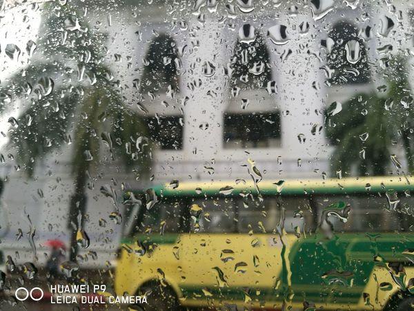 Raining day 2