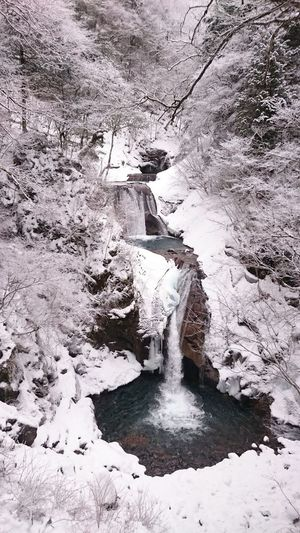 Waterfalls in winter.七ツ釜五段滝 ご無沙汰してます💦 Waterfalls Waterfall_collection Nature EyeEm Nature Lover Landscape Mountains Snow Winter Enjoying Life Photography Japan Outdoor Photography Taking Photos カメログ