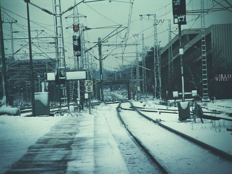 The Week On EyeEm Snow Taking Photos Hello World Relaxing Enjoying Life Hi! Winter Cold Sony Photography Best Winter Times
