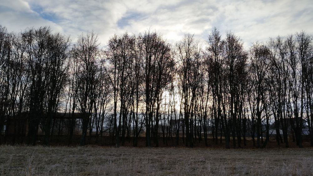 Sky Nature Beauty In Nature Travel Cold Temperature Winter Ukraine Snow Ukraine, My Ukraine! Zhytomyr Andrushivka