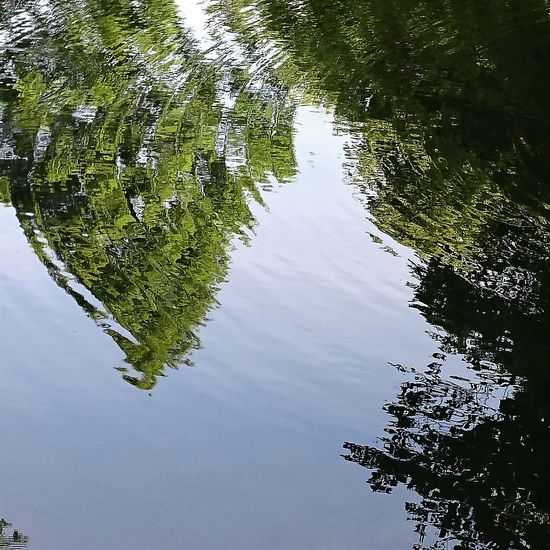 Ripples Beauty In Nature Distortion Lake Reflection Water