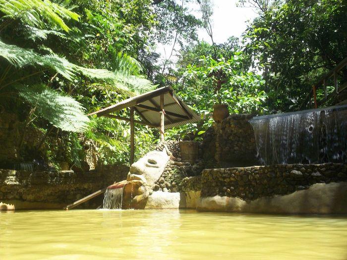 Mud Pool St. Lucia Carribean Natural Spa Thermal Bath