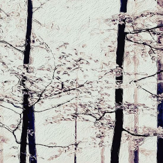 The Beauty Of Trees Simplistic Digital Art Digital Painting Art Photo Manipulation Creative Photography Abstract Pastel Leaves