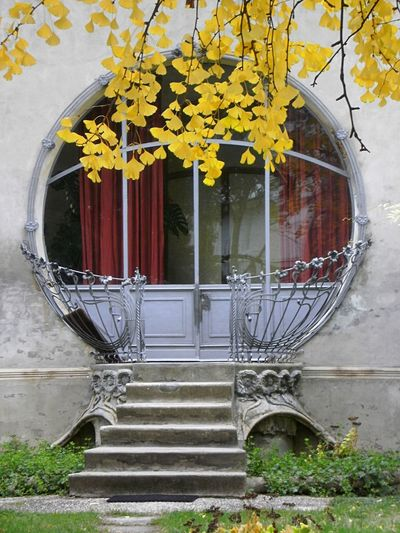 Flower No People Architecture Built Structure Plant Day Steps Window Building Exterior Growth Outdoors Yellow Tree Nature Window Box Close-up
