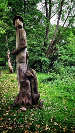 Tree Art Trees Walking Around Taking Photos Enjoying Life IPhoneography