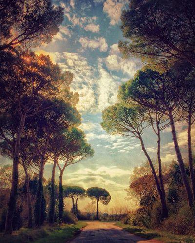 NEM Submissions IPhoneography EyeEm Best Shots EyeEm Best Shots - Landscape Iphoneonly NEM Mood