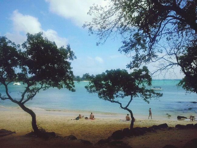 Sea Ocean Mauritius Summer