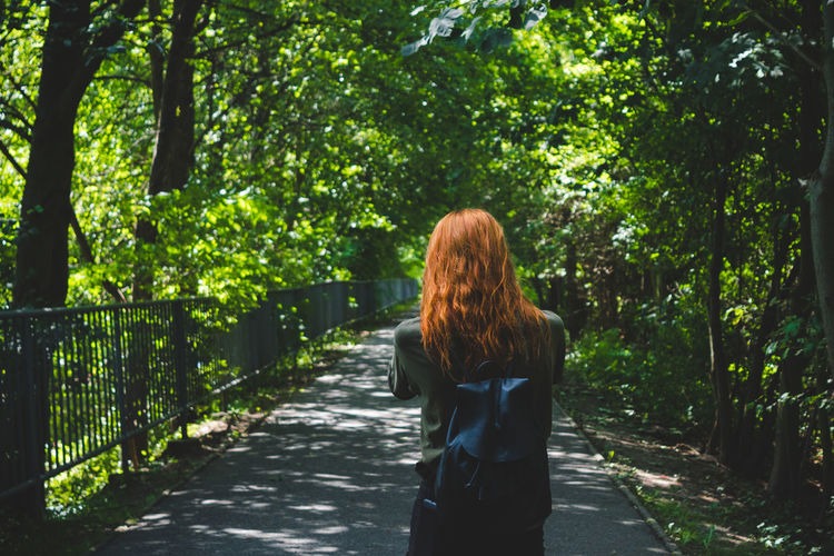 Rear view of woman standing amidst trees