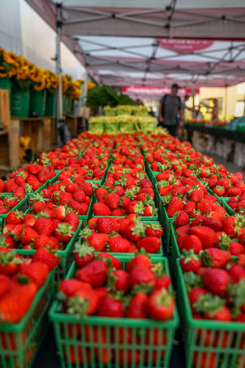 fresh market strawberries Strawberries Fruit Stand Supermarket Greenhouse Fruit Red Groceries Market Retail  Agriculture Healthy Lifestyle Business Finance And Industry Farmer Market Organic Farm Farmer Harvesting Picking Street Market Homegrown Produce For Sale Ripe Market Stall