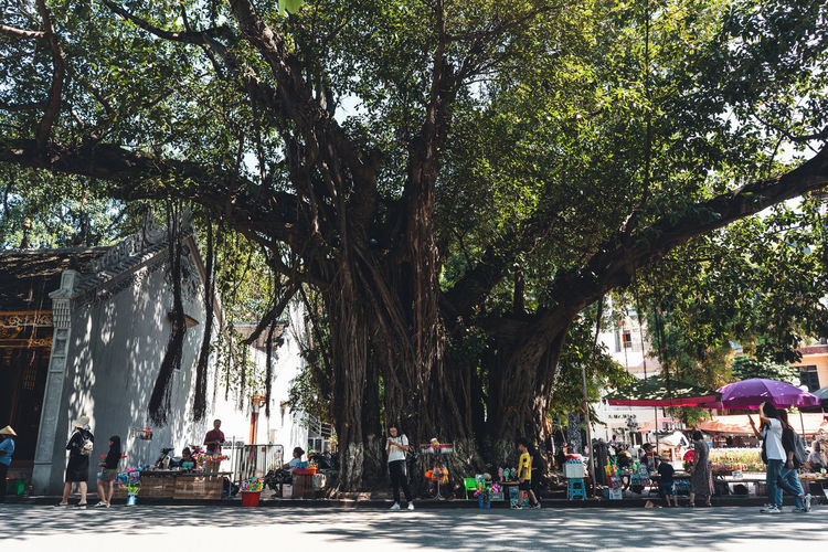 Group of people relaxing on tree trunk in city