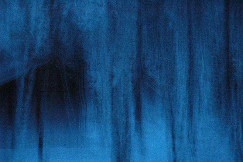 4eme dimension. 4th dimension. 4eme Dimension 4th Dimension Blue Forest Blue Madness Fantomatique Folie Bleu Forêt Bleu Ghostly