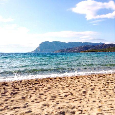 Sardegna spiaggia Tavolara sardina beach