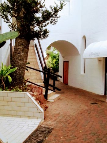 umhlanga Architecture Building Exterior Built Structure Day Entrance No People Outdoors Sunlight Tree