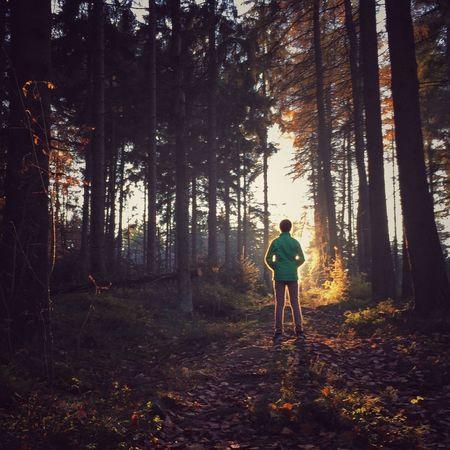EyeEm Nature Lover Iphonephotography IPhone EyeEm Best Shots - Sunsets + Sunrise Showcase: November IPS2015Light