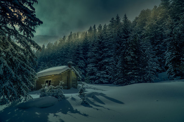 Log cabin at snowcapped forest during winter