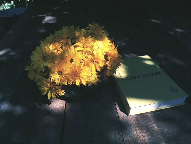 Flower Water No People Nature Yellow Petal Beauty In Nature Flower Head Indoors  Travelling Light And Shadow Wildlife & Nature Ukraine Into The Wild Book