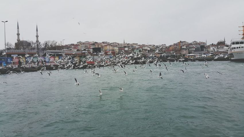 Istanbul Turkey Check This Out Sea View