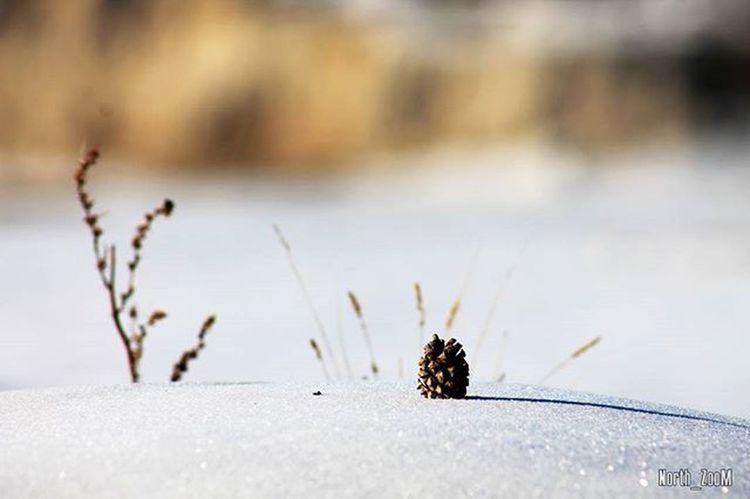 Northzoom Canon1100d Ykt14 Yakutsk фото зима Якутск холодно VSCO Sakha республика саха фотограф Россия Instagood Instaykt Vscocam Vscogood сахасирэ Yakutsk Граффити Ночь Fotografii_yakutska @fotografii_yakutska